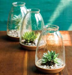 terrarium crafts - these are cute...and look easier to plant than others