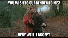 #ThePrincessBride #FireSwamp #surrender #Buttercup #Wesley #memes #graphicdesign #marketing #advertising #smallbusiness #smallbiz #MJBPhotographicSolutions