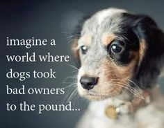 imagine a world where dogs took bad owners to the pound...we would not have enough room..pray that all humans learn that animals r here to help us love..because that is why we r here..peace be with all of god's creations