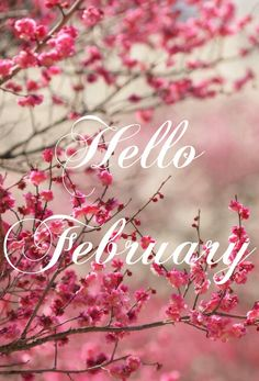 Jan's Page of Awesomeness! Hello Wallpaper, Cute Wallpaper Backgrounds, Cool Wallpaper, Artistic Wallpaper, Wallpaper Quotes, Wallpapers, Hello February Quotes, Hello September, December