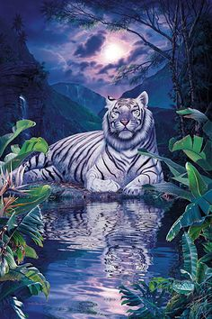 Huacan Diamond Embroidery Animal DIY Cross Stitch Diamond Painting Tiger Rhinestones Square Full Craft Mosaic Scenery Home Decor. Beautiful Fantasy Art, Beautiful Cats, Animals Beautiful, Beautiful Pictures, Big Cats Art, Cat Art, Tiger Pictures, Animal Pictures, Anime Animals
