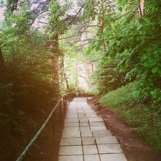 #world#green#slovakia#path#infinity#gototheheaven#dreaming#comeon#forest#trees#nature