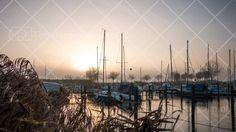 zeewolde bolhaven mist zonsopgang