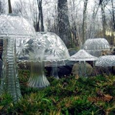 Glass mushrooms from yard sale finds.