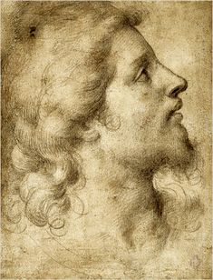Bronzino, Head of a Bearded, Young Man in Profile Facing Right, 1545-55. Black chalk on light brown paper, 8 1/4 x 6 1/4 in. (21 x 15.8 cm).