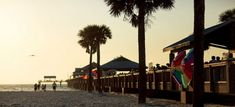 Cheap things to do in St. Petersburg and Clearwater, Florida | Cheapflights