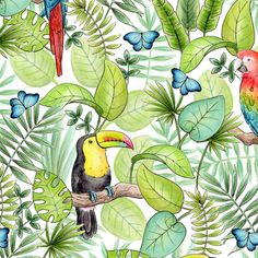 Tropical Birds Fabric -Tropical Rainforest By Hazel Fisher Creations- Toucan Parrot Tropical Bird Cotton Fabric By The Metre by Spoonflower Double Gauze Fabric, Cotton Twill Fabric, Cotton Canvas, Australian Birds, Fabric Birds, Tropical Birds, Bird Drawings, Custom Fabric, Spoonflower