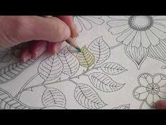 Secret Garden Colouring Book How To Colour A Leaf Part 1