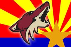 Two New Logos for Arizona Coyotes Spotted Nhl Wallpaper, Arizona Coyotes, Custom Flags, Flag Logo, Mirror Image, Funny Pictures, Art Pictures, Free Design, Hockey