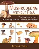 If you spend any time outdoors, you've probably seen mushrooms growing under trees or in your yard, but if you're out camping or just enjoy foraging, here are some ways to tell if the mushroom you're looking at is edible.