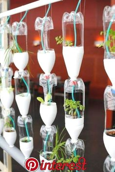 Pin by Anchordeco | Home Decoration on DIY | Vegetable Garden, Hydroponics system, Bottle garden   Pin by Anchordeco | Home Decoration on DIY | Vegetable Garden, Hydroponics system, Bottle garden