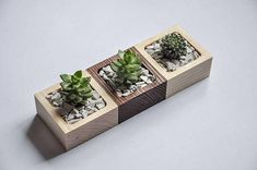 Nice 24 Adorable DIY Planter Ideas for Indoor and Outdoorhttps://cekkarier.com/24-adorable-diy-planter-ideas-indoor-outdoor.html