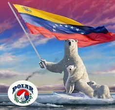 (1) Venezuela Resiste (@EraimyZ122) | Twitter