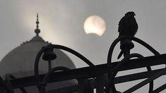 Suomi maallistuu, mutta maailma muuttuu yhä uskonnollisemmaksi – Islam kuroo kiinni kristinuskon etumatkaa - Kotimaa - Ilta-Sanomat Kuroko, Table Lamp, Home Decor, Art, Art Background, Table Lamps, Decoration Home, Room Decor, Kunst