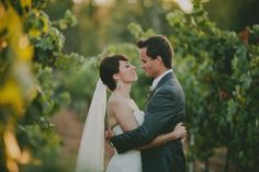 Vineyard wedding - wild whim photography + design