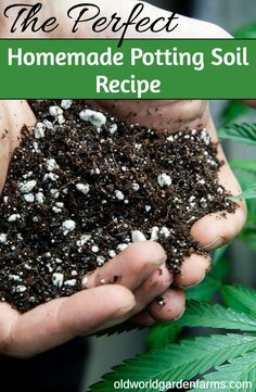 Our OWG Homemade Potting Soil Recipe Compost – 6 cups Pulverized Top Soil – 6 cups Worm Castings – 2 cups Spent Coffee Grounds – 2 cups Perlite – 2 cups Compost Soil, Garden Compost, Garden Soil, Composting, Fruit Garden, Garden Art, Grow Potatoes In Container, Container Gardening Vegetables, Vegetable Gardening