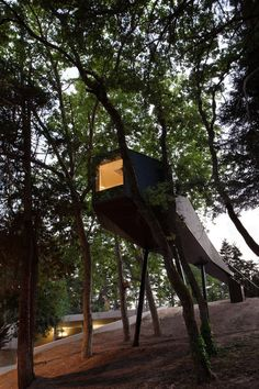Portugal:  Pedras Salgadas tree house