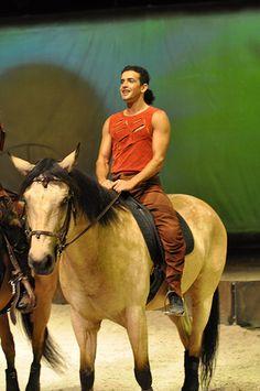 Horse & Rider from Cavalia
