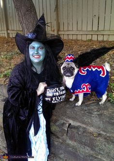 Halloween costume ideas for pets and owners - Flying Monkey Dog Costume