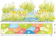 Kombinace kvetoucích trvalek a okrasných trav