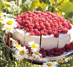 Sattmark Cafe in Parainen - raspberry cake