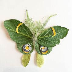 A leafy Luna moth! Found on the pages of Flora Forager: a seasonal journal… A leafy Luna moth! Found on the pages of Flora Forager: a seasonal journal… Art Floral, Deco Floral, Diy For Kids, Crafts For Kids, Arts And Crafts, Leaf Crafts, Flower Crafts, Nature Activities, Pressed Flower Art