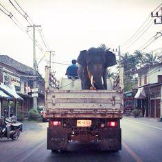 Transport in Colombo, Sri Lanka