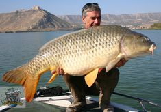 Fishing guide Gary Allan operates in Mequinenza, Spain, and takes visiting anglers to places where they can hook big carp like this 42 pounder.