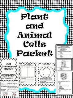 This is a 10 page packet on animal cells, plant cells, and the differences between the two.This packet contains the following:A sort activity...
