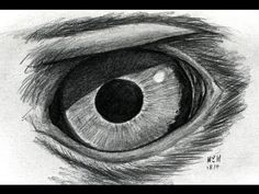 Drawing an Eagle Eye, Step by Step, Video, Birds, Animals, FREE Online Drawing Tutorials, Added by finalprodigy, January 8, 2014, 4:31:43 pm