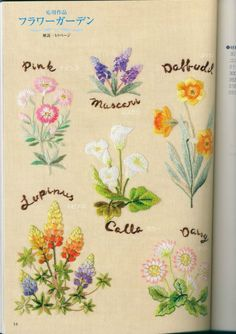 Gallery.ru / Фото #45 - Flower garden - simplehard