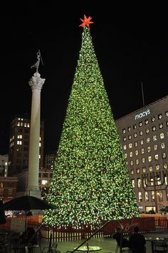 Christmas in San Francisco....if we move ill miss this beyond measure. Nothing comes close to the magic of San Francisco. Roasted chestnuts,bells ringing,good company and the holiday spirit.
