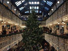 Christmas tree at Jenners Department Store - Winter Highlights - edinburgh.org