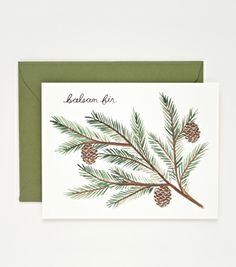 Balsam Fir Card from Rifle Paper Co - framing for seasonal art