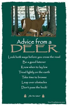 Advice from a Deer Frameable Art Postcard – Your True Nature Inc Advice Quotes, Life Quotes, Top Quotes, Nature Quotes, Reality Quotes, Daily Quotes, Qoutes, Animal Spirit Guides, Animal Medicine