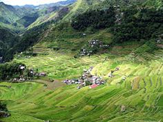 Banaue: A town on the Cordillera mountain range in the north of the island of Luzon, in the Philippines. It is mainly visited for its stunning rice terraces, which are a UNESCO World Heritage site. Philippines Tourism, Visit Philippines, London Wonders, Banaue Rice Terraces, Countries Of The World, Asia Travel, World Heritage Sites, Southeast Asia, Beautiful Landscapes