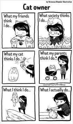 The Daily Life With Two Cats By Illustrator Vernessa Himmler This Brilliant Comic Artist Shares Her Daily Life With Two Cats And It's So Relatable I Love Cats, Crazy Cats, Cute Cats, Funny Cats, Funny Animals, Crazy Cat Lady Meme, Adorable Kittens, Cutest Animals, Cat Comics