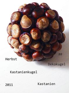 Herbst, Herbstdeko, Herbstkugel, Dekokugel, Kastanien, Kastanienkugel, 2011, Pfiffigste, www.pfiffigste.de #herbstallerliebst