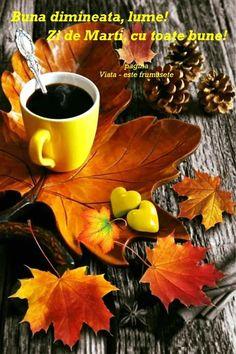 Coffee Cafe, Coffee Set, Coffee Break, Iced Coffee, Happy Birthday Celebration, Best Coffee Shop, Aesthetic Coffee, Good Morning Coffee, Autumn Coffee