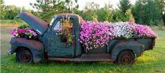 Flowers in a truck.