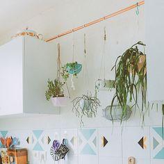 Suspendre ses plantes dans la cuisine avec une barre en cuivre / DIY plants hanging