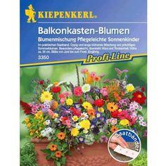 Vintage Warenkorb BALDUR Garten GmbH