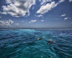 scuba diving, via Flickr.