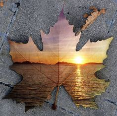 I love how the photo of the sunset on water has been merged and layered with the photo of a leaf on the pavement, adding so much more depth and interest to both pictures.