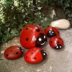 ladybug painted rocks-a bit more potential for whimsy here-wire legs, googly eyes etc. oops paint combined with ripped open bags of rock in garden and give away for free in garden during the season Garden Crafts, Garden Projects, Art Projects, Garden Kids, Fun Crafts, Crafts For Kids, Ladybug Rocks, Outdoor Projects, Dream Garden