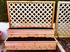 teierd vegetable garden bed- lattice would be great for raspberries, peas, or grapes, and would act as a vegetation wall too