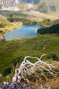 Biogradska Gora National Park - Pesica Lake - by Jovan Nikolic