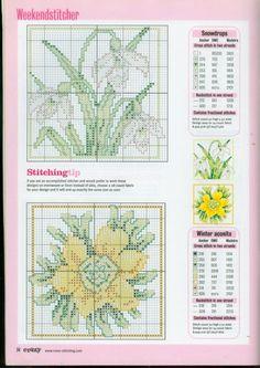Gallery.ru / Фото #33 - разные цветочные схемы - irisha-ira