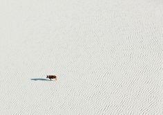 As incríveis imagens aéreas de Botswana por Zack Seckler