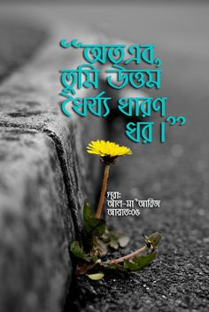 best quote in bangla images bangla quotes islam for kids